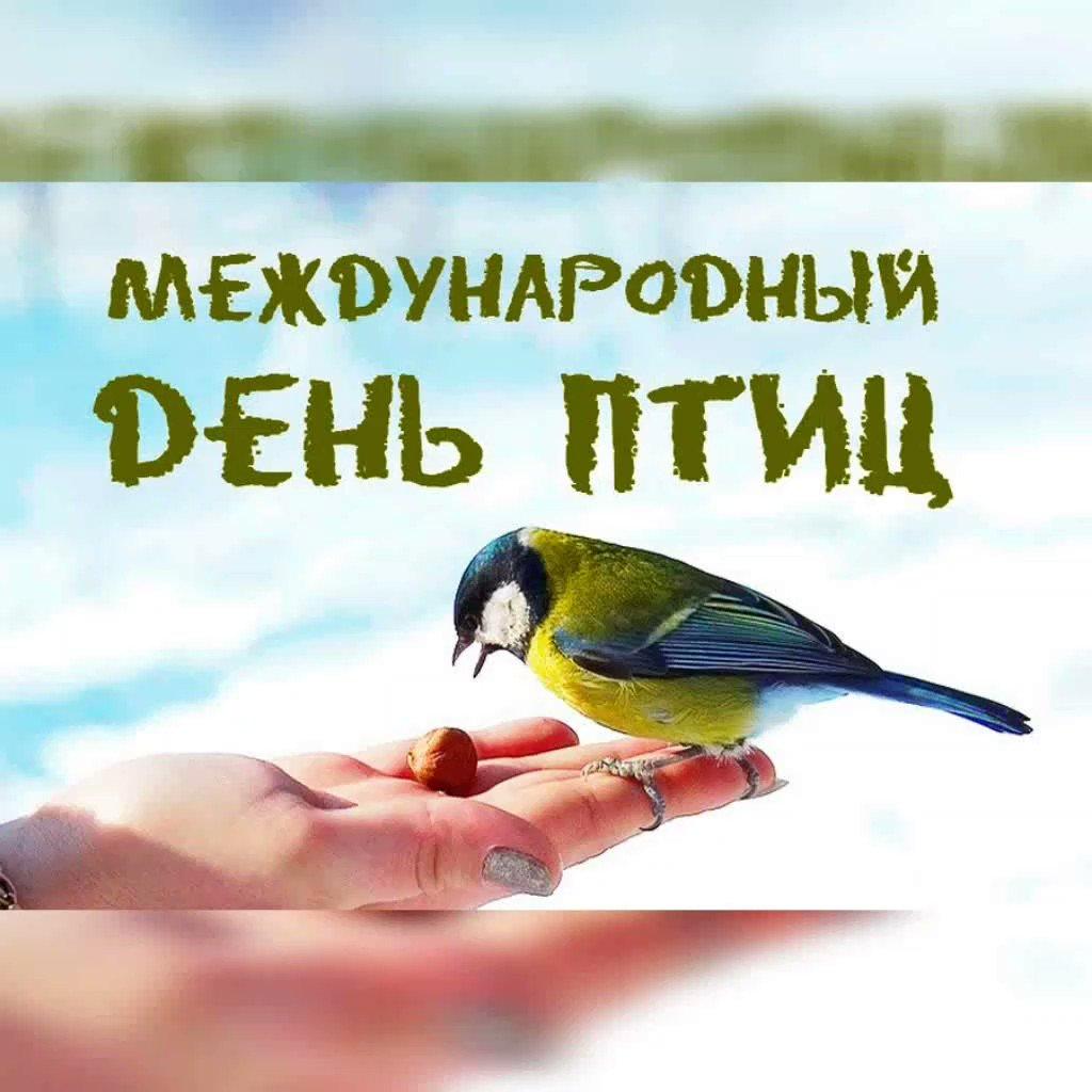 Поздравление с днем птиц картинки стихи