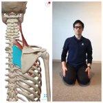 肩甲骨と肩甲骨の間を伸ばすストレッチで肩こりによる頭痛が治るらしい