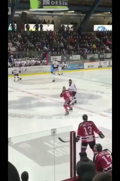 Block or charge?🏀🤷♂️🏒😳💥😱 (on the ref😏)
