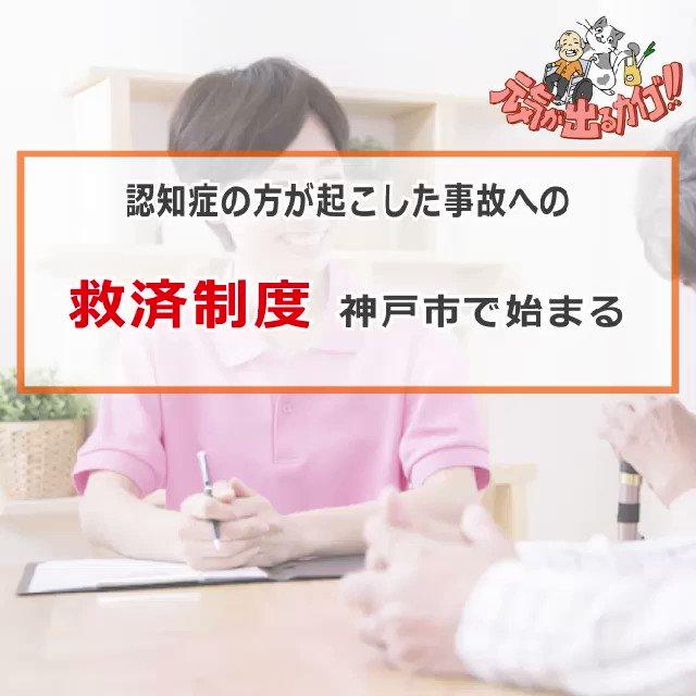 認知症の方が起こした事故、神戸市が賠償負担!認知症の方の保険料を市が負担して保険に加入する仕組みのようです。認知症のご本人、ご家族からすると安心出来る仕組みですね!☺️こうした仕組みは広がって欲しい!☺️☺️#元気が出るカイゴ #介護 #親の介護