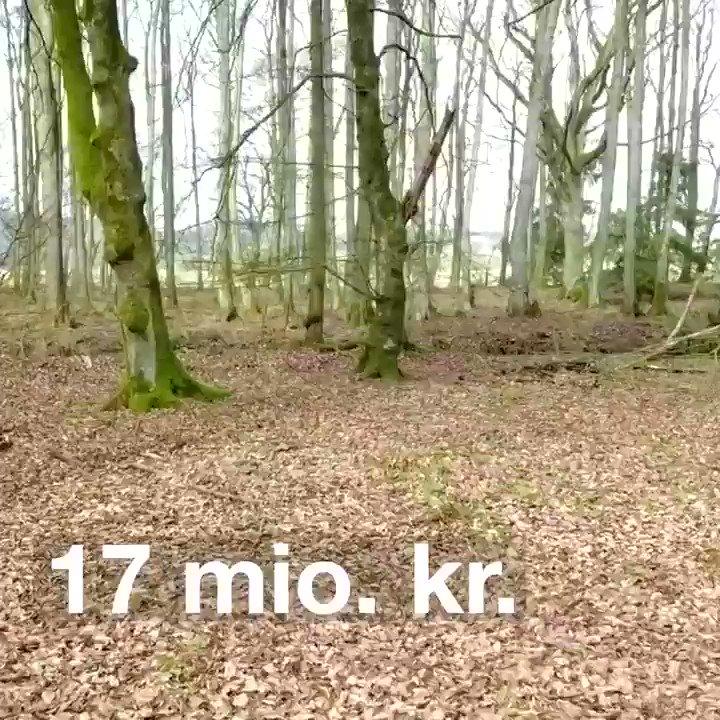 separation shoes dce2c 586bb Danmarks Natur( DanmarksNatur)さん   Twitter
