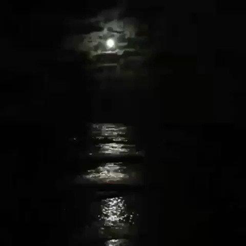 أحب أحب أحب القمر والبحر والغيم والليل.. اذا اجتمعوا🖤!