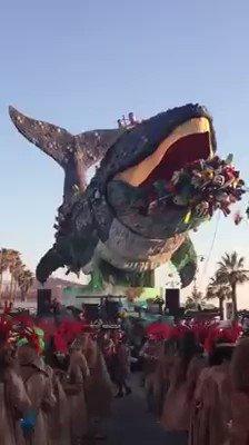 El grito de la ballena ante la contaminación !Ayudanos a crear conciencia. #SextaExtincion