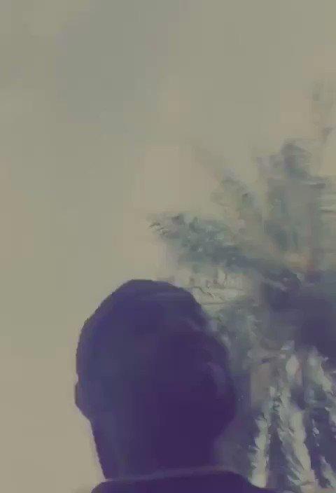 ̿в̿α̿ɒ̿є̿я's photo on #صباحات_الهلال