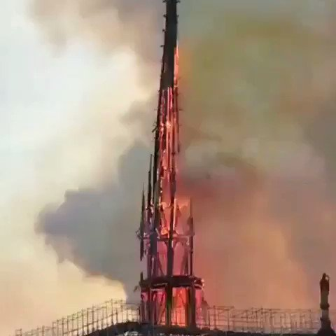 Jack of all trades's photo on #NotreDameCathedral
