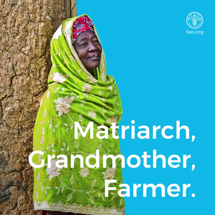Matriach Grandmother Farmer   🎥 The story of Mehaou 👇 #ZeroHunger #WomenEmpowerment