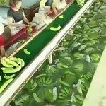 謎の液体に漬けて輸出する中国産の農作物