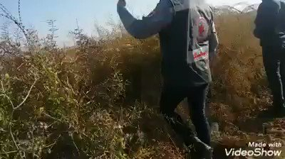 Last Friday, a 15 year old was shot and killed at the #Gaza security fence. What killed Maysara Abushlov was his attempt to infiltrate into Israel. This is the video of Palestinians recovering his body shortly after he was shot in the northern Gaza Strip. #Israel