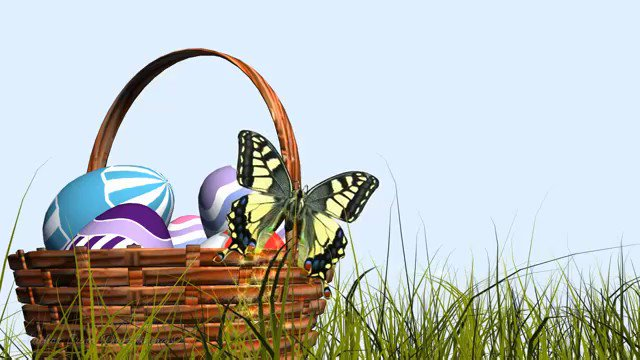 #HappyEaster #Enjoy #eggs #love #Arts #artzyme #homedecor 🎂🥚