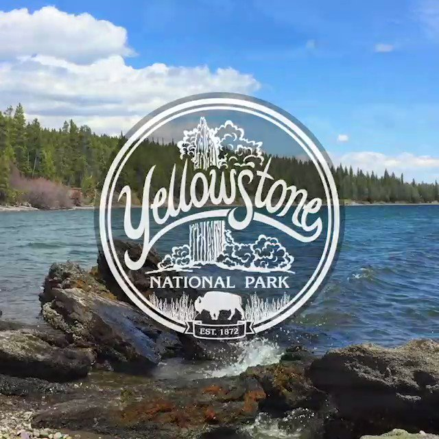 #NationalPark week is here. Perhaps you'll find yourself in #Yellowstone National Park walking the beaches of Gull Point...Do you know where it is? Explore today's #outdoors #hiking #photo #blog . https://montana-treasures.com/blogs/photo-blog/beaches-of-wonderland…