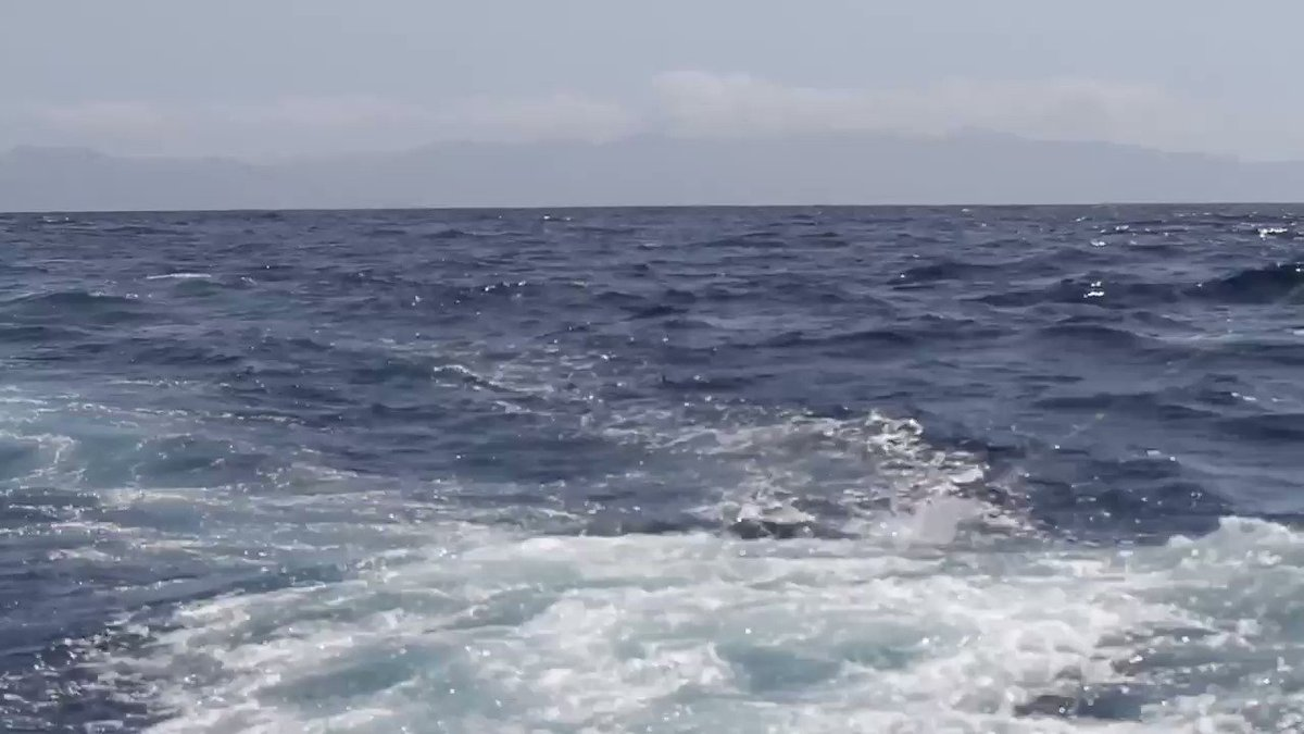 Cape Verdes - Blue Marlin bite on the Hooker.