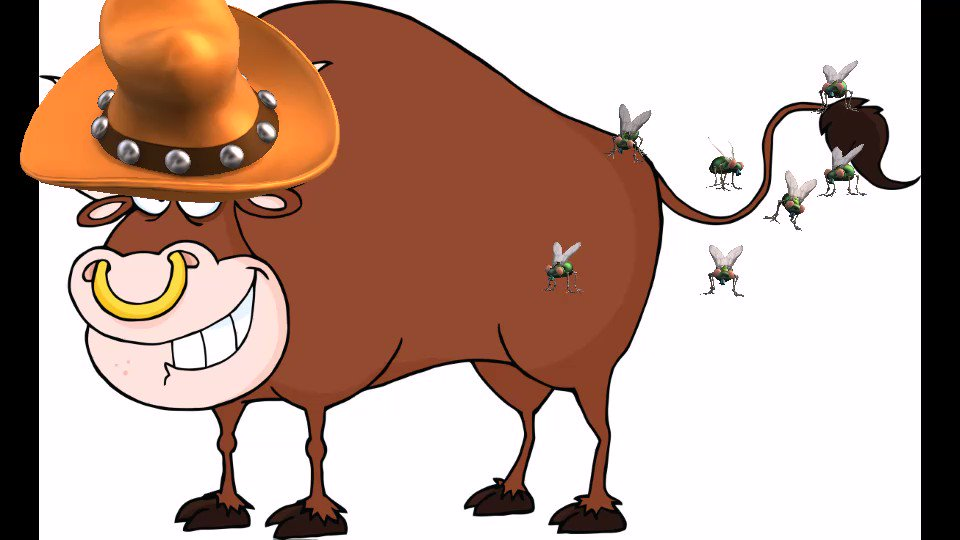 Bulls For Sale. Yearling & 2 year old Hereford bulls. Semen tested.  #ag #agchat #alberta #saskag  #farm #agtwitter #cdnag #westcdnag #ontag #mbag #bulls #yearlings #hereford #forsale  https://bit.ly/2GFZgwz   ☎