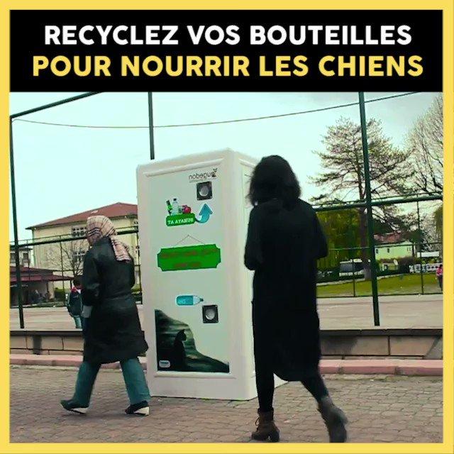 Le recyclage au service du bien-être animal ! Bien joué 👏  Plus d'infos : http://bit.ly/2IYcBSr