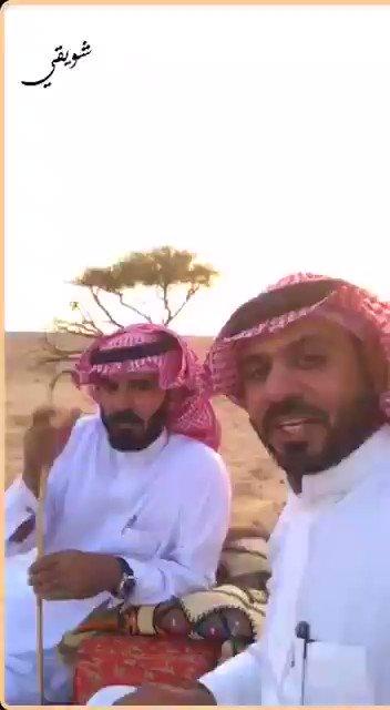 تركي بن رشيد الزلامي's photo on #الجمال_او_المال