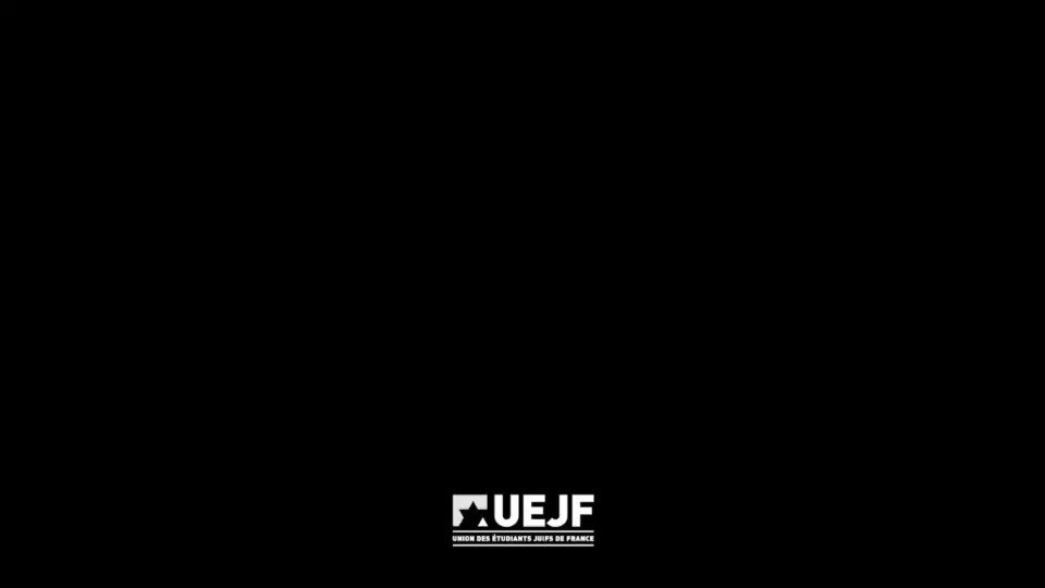Le président et des militants de l'UEJF agressés physiquement par le @RNational_off à Metz - 1er mai 2019  Communiqué de l'@uejf : https://urlz.fr/9DYO