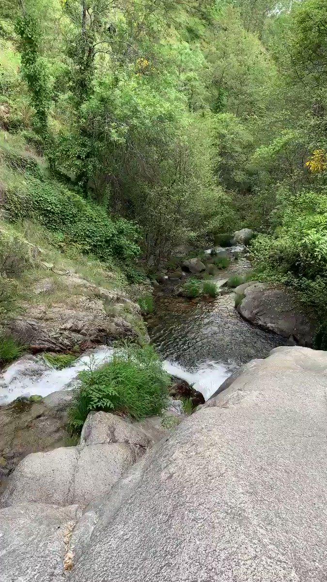Es la Chorrera del Hornillo, en Pedro Bernardo, Ávila. Una ruta muy sencilla que te lleva a un lugar de paz y desconexión total 😴 En esta época primaveral luce espectacular! 🤩