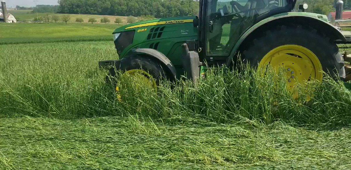 bitcoin macchina agricola