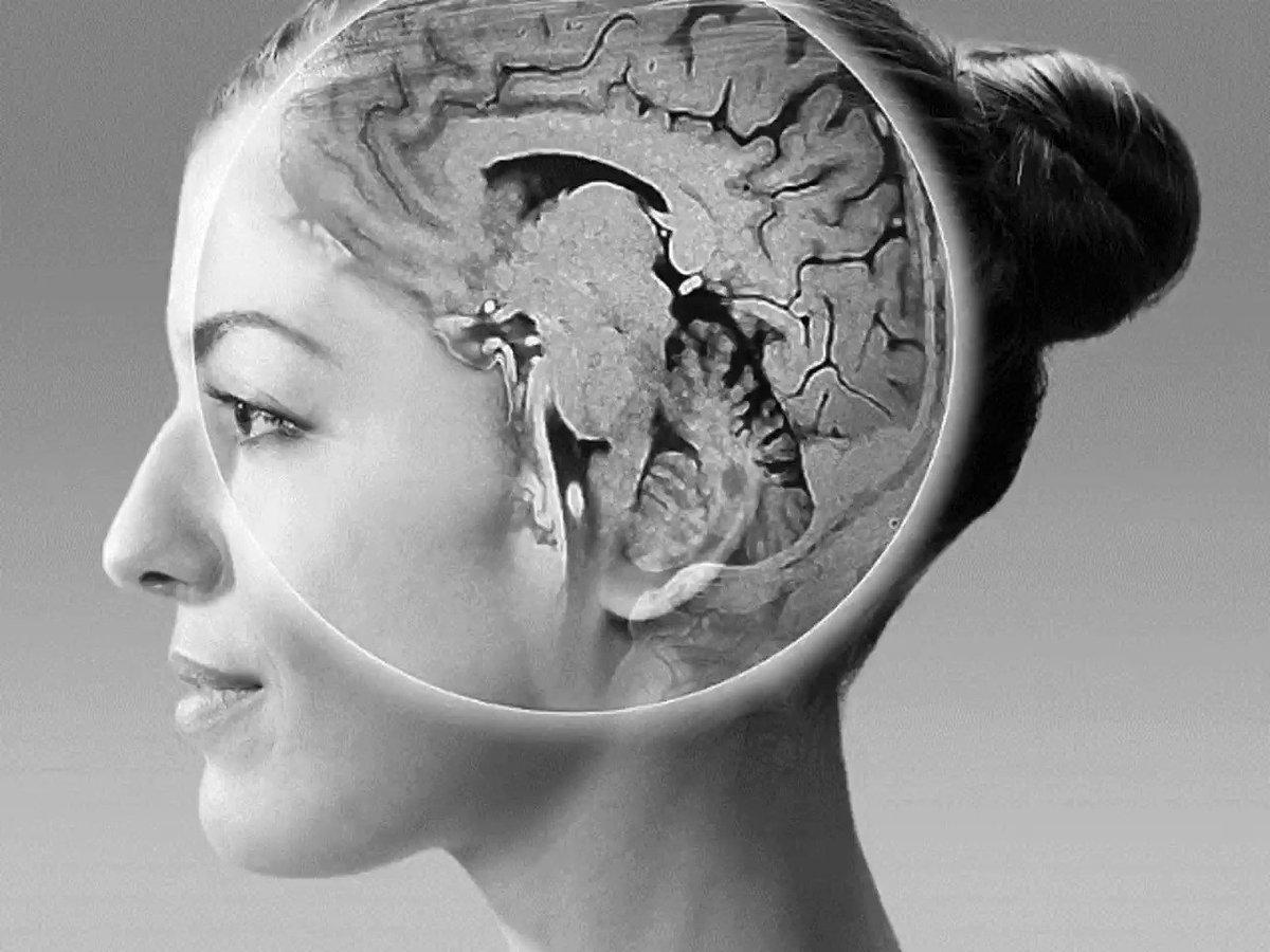 脳画像と小脳機能についてまとめました。①脳画像×小脳機能②脳画像×運動失調の2部構成です!今回は第1部です!内容の雰囲気が分かる動画を作りました!#小脳 #脳画像 #運動失調脳画像×小脳機能 ~視覚で学ぶ!~|はらかずみ @ka_zu_mi_0904|note(ノート)