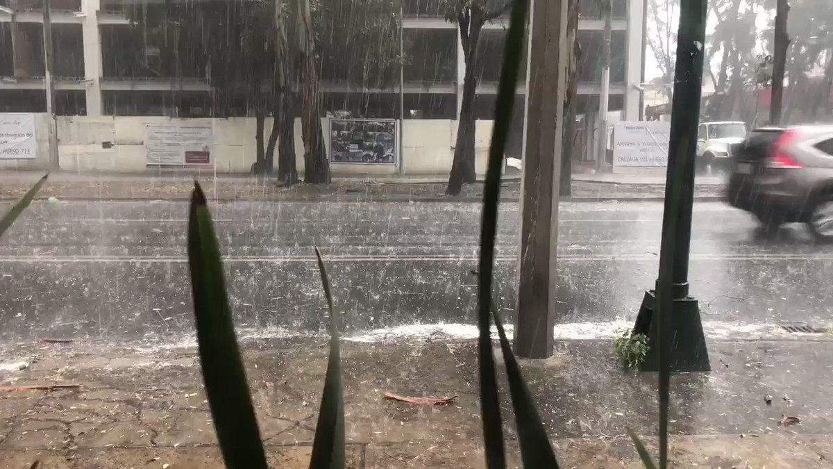 RT @Arq_Rojo:Después de días de contaminación, llega la lluvia con #granizo a Coapa. #CDMX