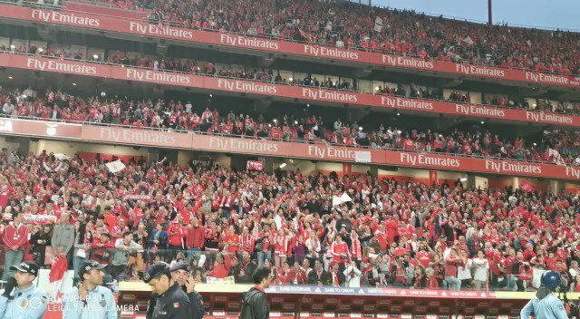 SL Benfica's photo on Benfica