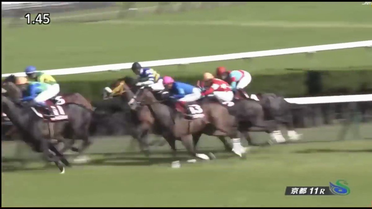 京都新聞杯 勝ち馬だけは馬券になれるこのレース 勝ったジェニアルは11番人気 切った方がいいか、それとも5頭も出走するから1頭くらい絡むか  田辺戻りのタガノは気になりますねー  #ダービー出走馬の前走を振り返ってみる