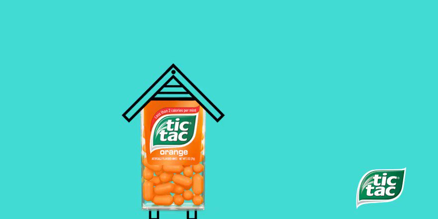 What do you call a bee born in May? 🐝 Happy World Bee Day ❤ #tictac #tictacglobal #worldbeeday