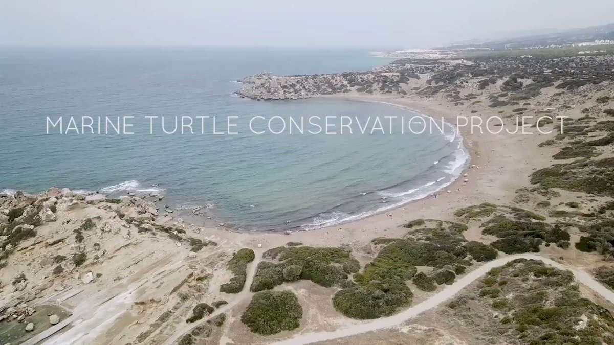 Its #WorldTurtleDay so take a sec to check out the Marine Turtle #Conservation Project. 27 years ago @UniofExeter Profs @annettebrod and @BrendanGodley received a letter, and the rest... is history! Thanks to @muddyduckuk for the film! #SeaTurtle #MAVA  http://bit.ly/2Jz5Ac3