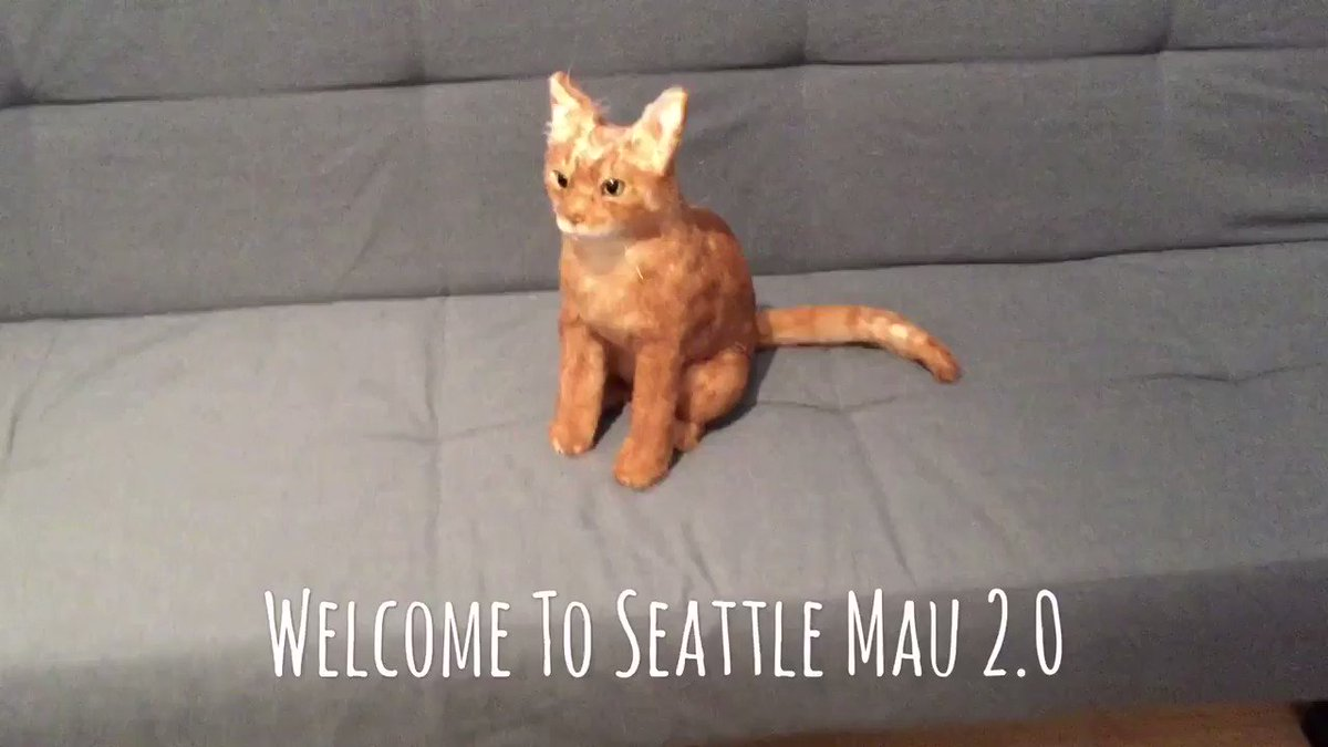 Welcome to Seattle Mau 2.0! Designed in the eye of @MauSupercat, Mau 2.0 is on an epic trip to visit as many locations as he can. Follow his adventures at @0_mau2 and #JourneyOfFakeMau. Here was our introduction to our new friend! (sound on) - Hazel and Remy (tagging @aurora3s)