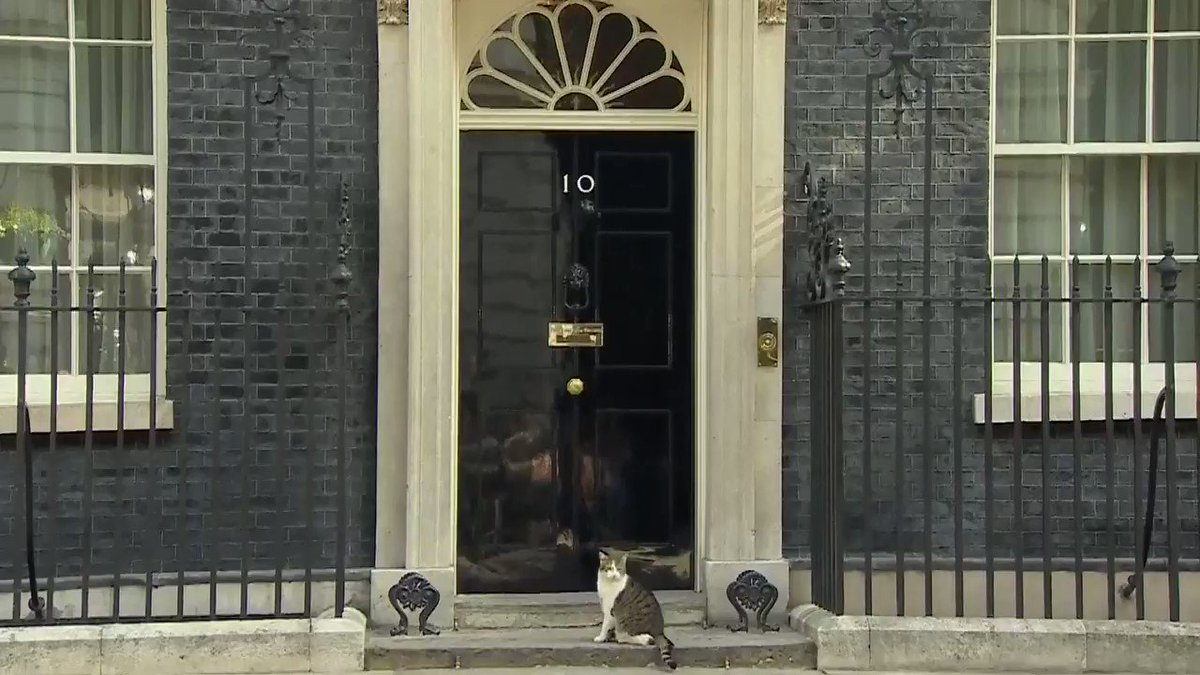 TicToc by Bloomberg's photo on 10 Downing Street