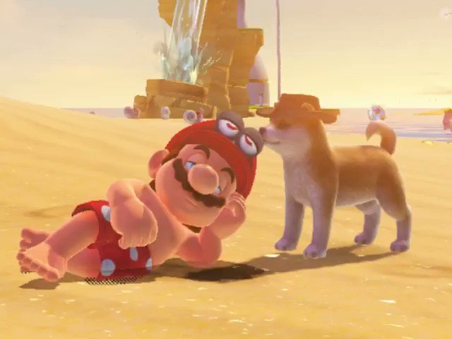 You can nap with the dog in Super Mario Odyssey