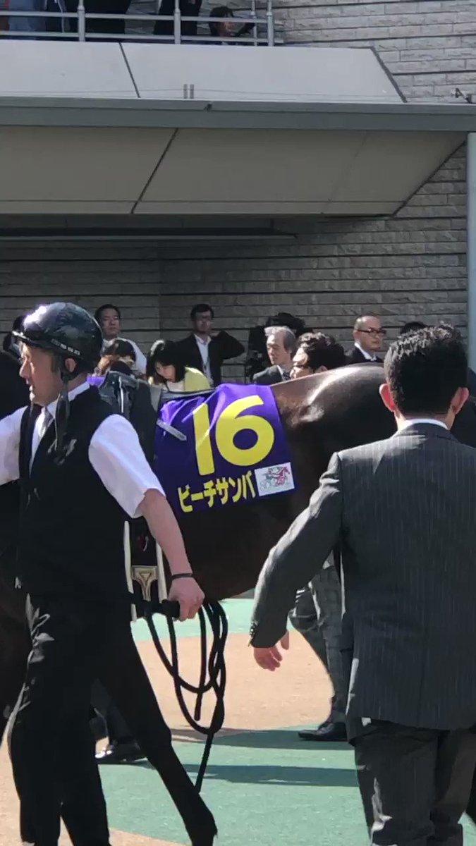 5/19オークスパドック ビーチサンバに乗る福永祐一 先に行ってしまう