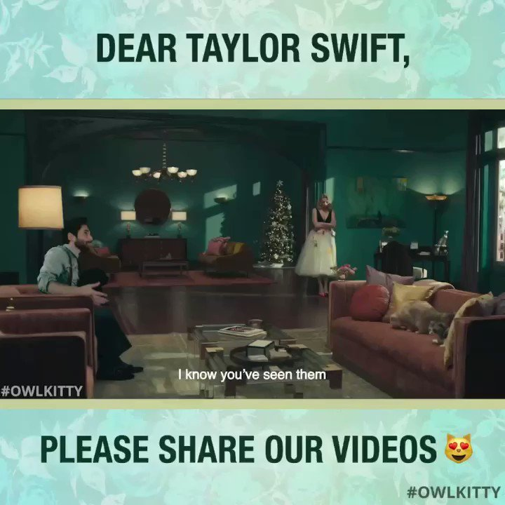 A message for @taylorswift13 #OwlKitty