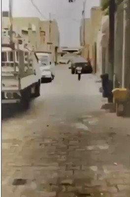طفل عراقي ابوه شهيد ومعقله صورته وسيده اول ماجاب الشهادة يوريها الى ابوه انه ناجح 😥 #أميرالملاحة