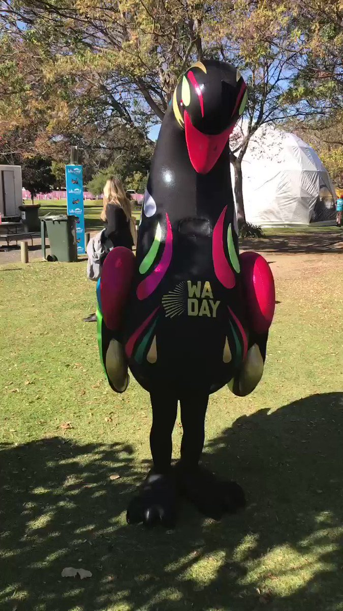 Pre-Mascot Race pics: Wally the WA Swan is the mascot of the @wadayfestival and there are a few of them and I got pics with all of them https://youtu.be/PWhRBQhpaB8   #WADay #WADay2019 #wadayfestival #perth #burswood #burswoodpark #westernaustralia #wa #mascot #swanmascot #mascotlife