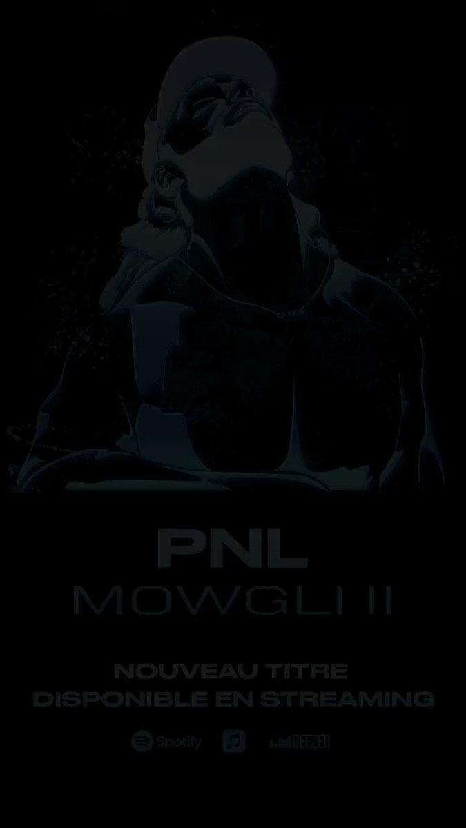 RT @PNLMusic: Mowgli II 🐾🌴 👉 : https://t.co/QyFfGsR2df https://t.co/inerETyrau