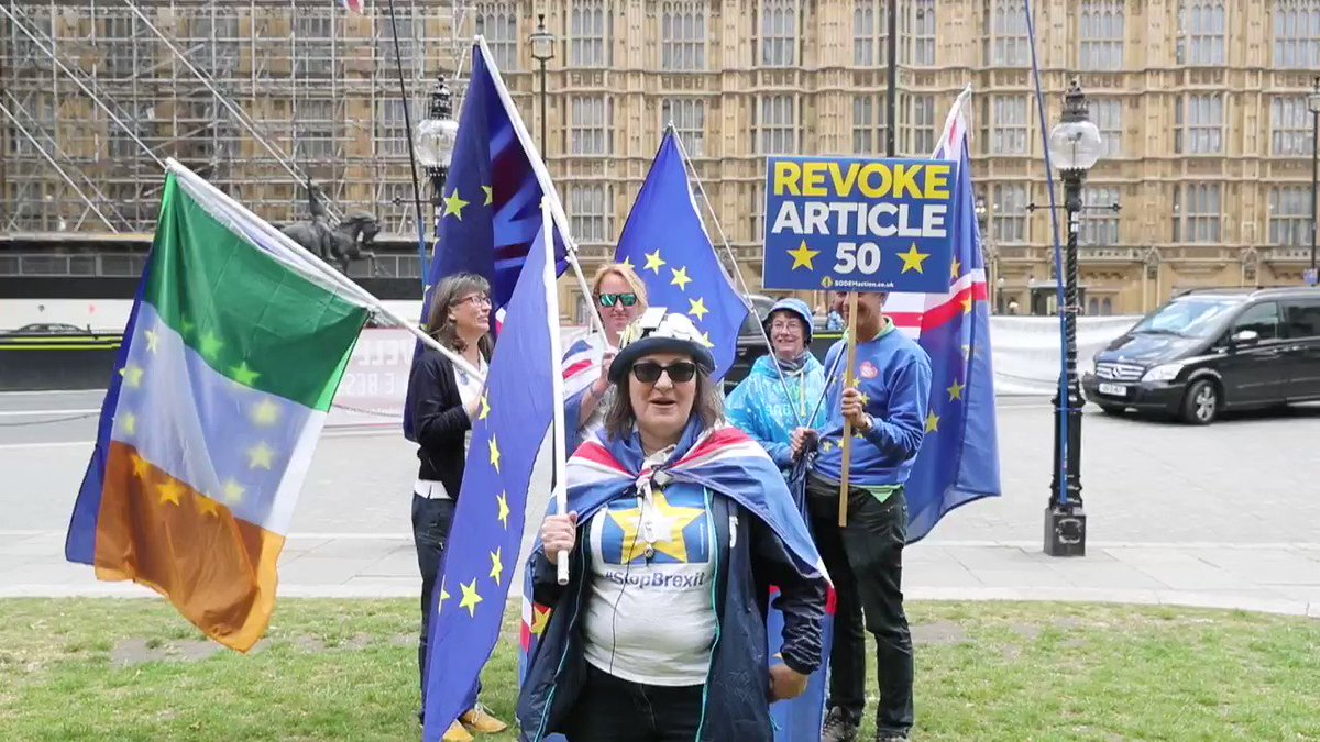 Our Polly @RemainingKind explaining why she's fighting to #StopBrexit and #Remain in the EU at #SODEM.