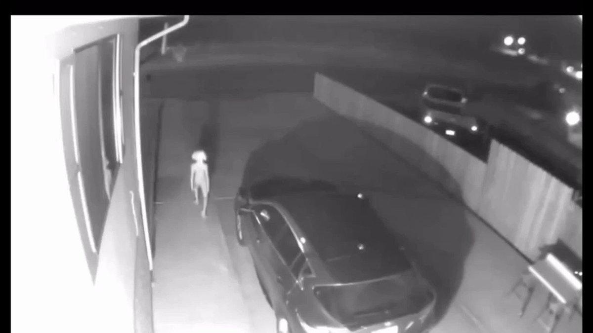 People Have All Kinds of Theories about this Video of an 'Alien' in Someone's Driveway