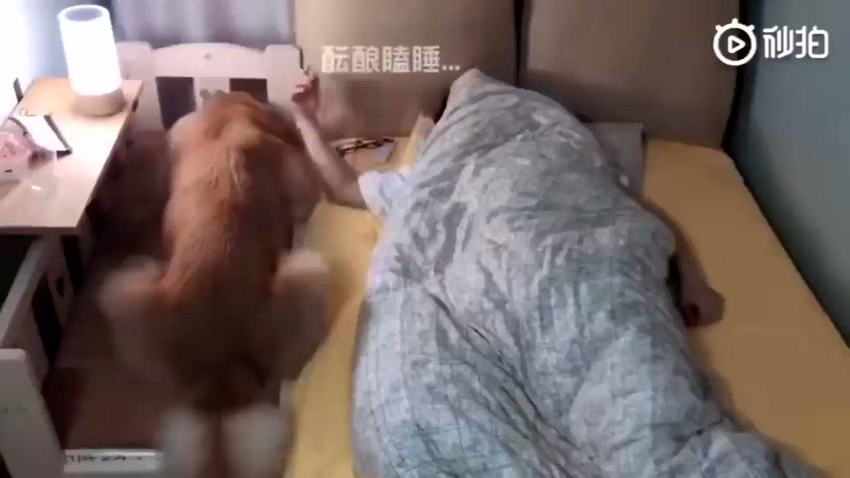一緒に寝たい✨