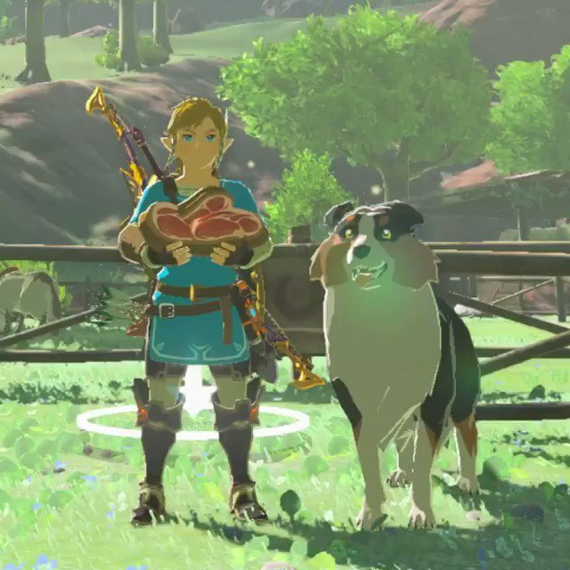 You can befriend a dog and then follow them on a treasure hunt in The Legend of Zelda: Breath of the Wild
