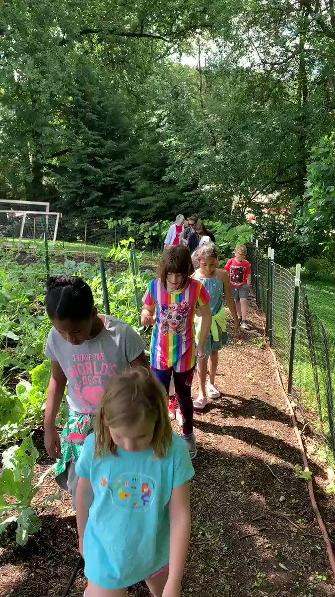 """Beautiful day to transplant our pollinating plants at an AFAC garden. 2nd graders touring the community garden at St. Andrews Church before planting and watering plants that we grew from seed for our spring expedition """"We Need Insects""""! <a target='_blank' href='http://twitter.com/CampbellAPS'>@CampbellAPS</a> <a target='_blank' href='http://twitter.com/ms_croce'>@ms_croce</a> <a target='_blank' href='http://twitter.com/mariann_sim'>@mariann_sim</a> <a target='_blank' href='https://t.co/bBsVF5UMuZ'>https://t.co/bBsVF5UMuZ</a>"""