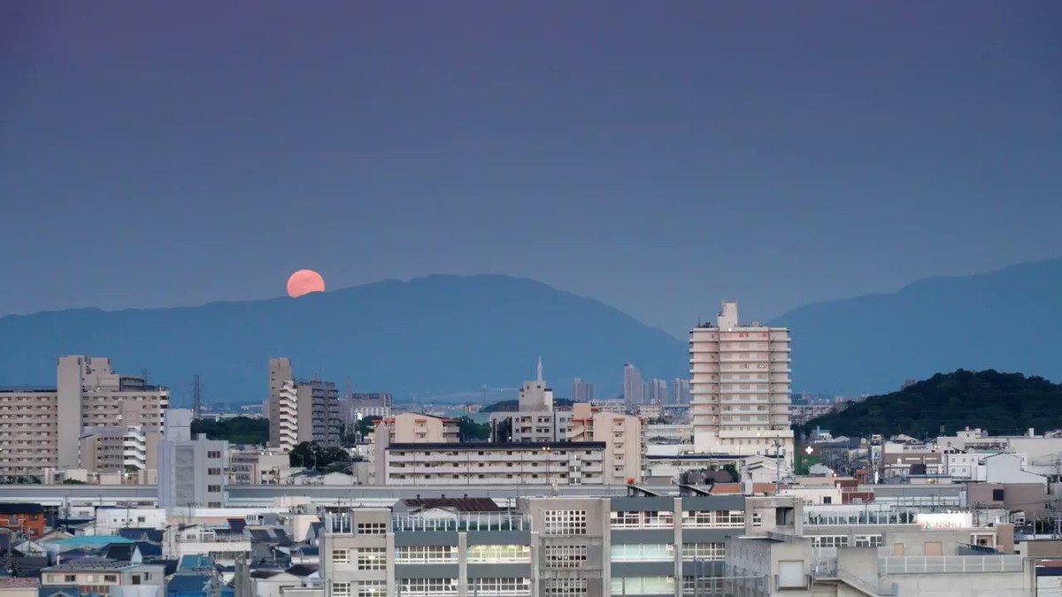 6月17日(月)ストロベリームーン(MP4) Osaka sakai