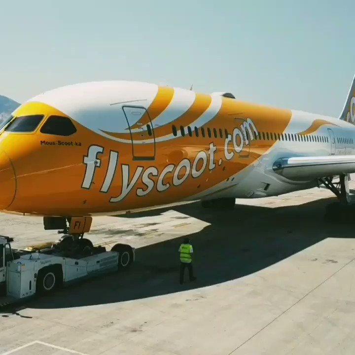 Image for the Tweet beginning: Το #Dreamliner της Scoot @flyscoot