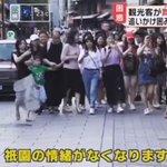 京都観光の現状がひどい?舞妓や芸妓を発見する内容のツアーが売れてしまう…