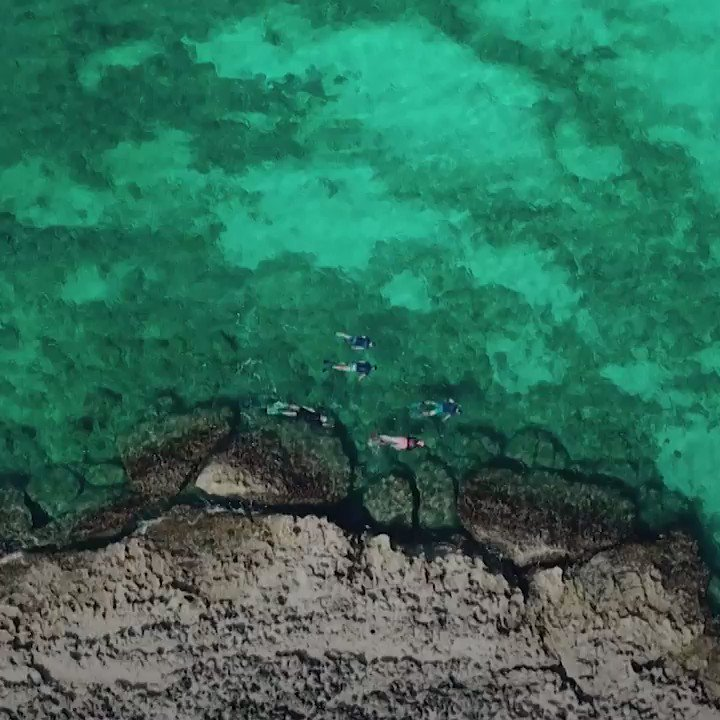 OCEAN | In less than 20 years, an Italian coastal area has transformed itself from a lawless wasteland into an international success story. How did they do it?Watch more: http://bit.ly/2WYo1JcVia @euronews (with @EU_MARE)