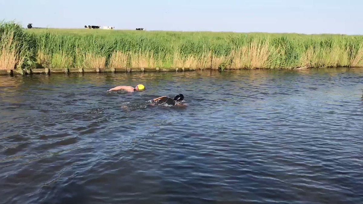 Maarten van der Weijden zwemt met weduwnaar Paulien van Deutekom
