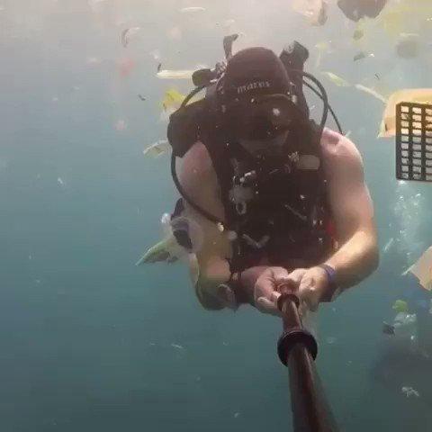 #BeatPlasticPollution  #SaveOurOceans 🌊  Video: Rich Horner