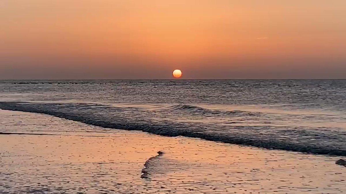 Image for the Tweet beginning: Good Morning y'all! #SunriseInSouthCarolina #beachlife