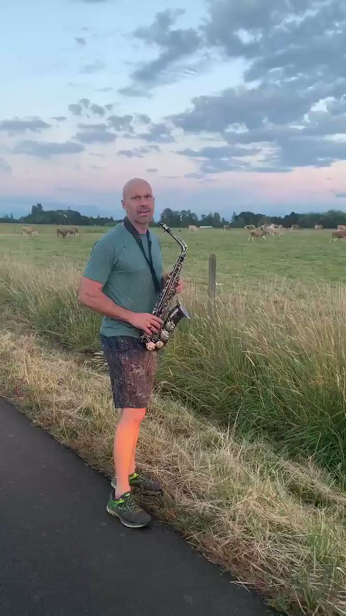 my parents are such goofs they drove out to the backroads so my dad could play the cows the songs he's been learning on the saxophone pt.1