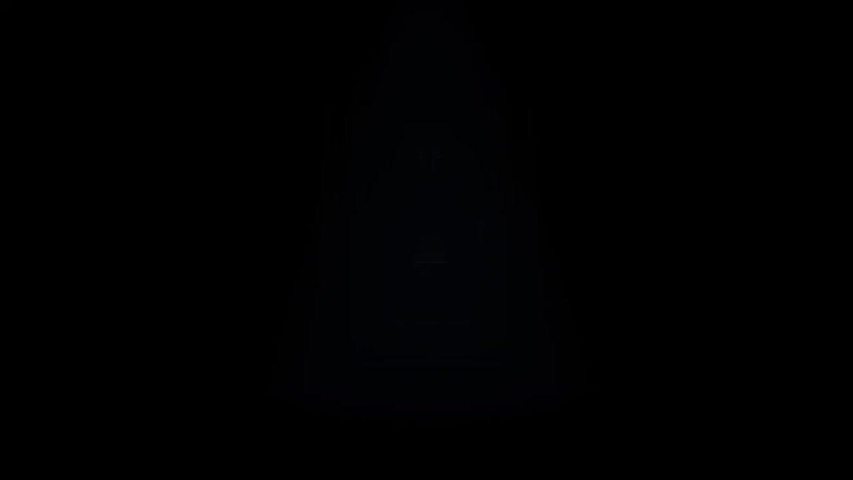 埋め込み動画