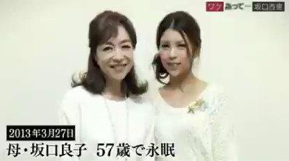 ノン フィクション 坂口 杏里